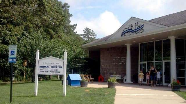 The Southampton Animal Shelter in Hampton Bays is