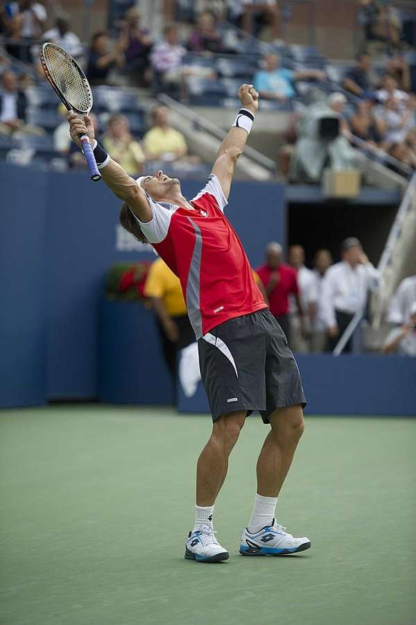David Ferrer raises his arms after defeating Janko