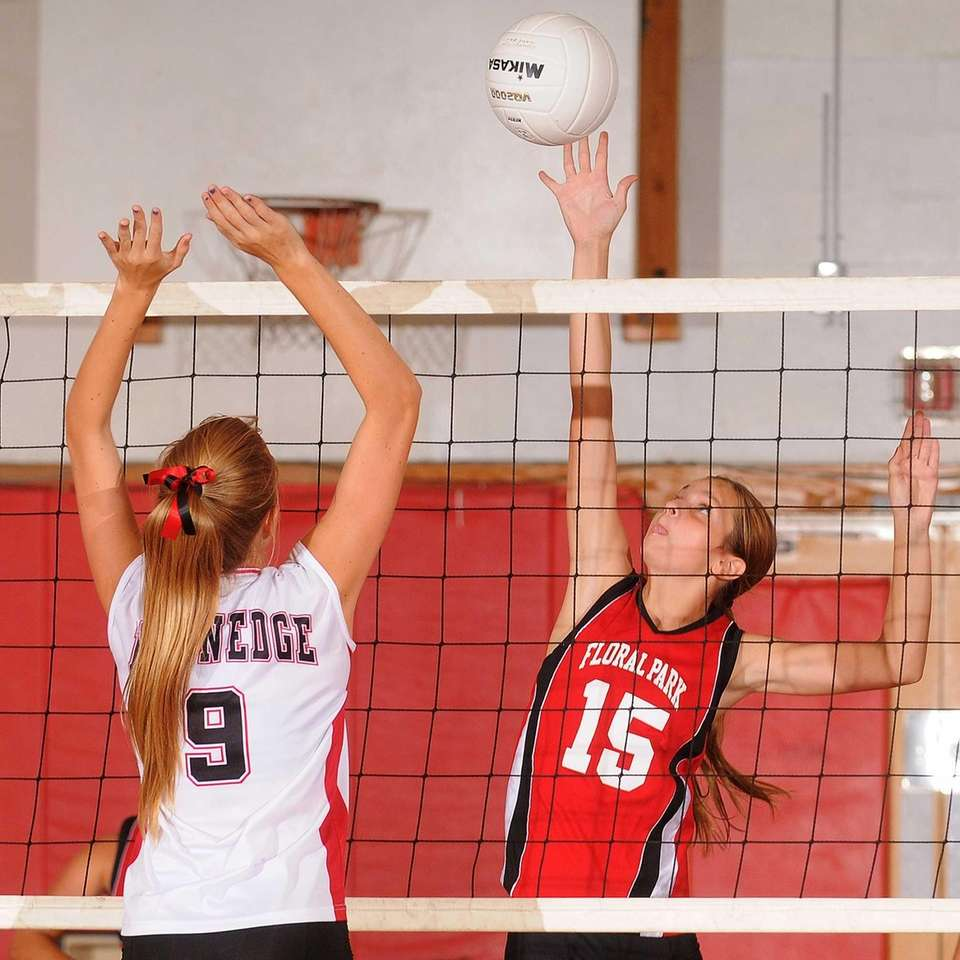 Floral Park junior Danielle Sarasky, right, attempts to