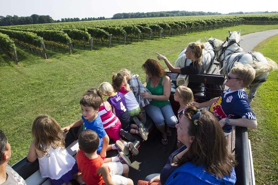 Tours offered at Martha Clara Vineyards include a