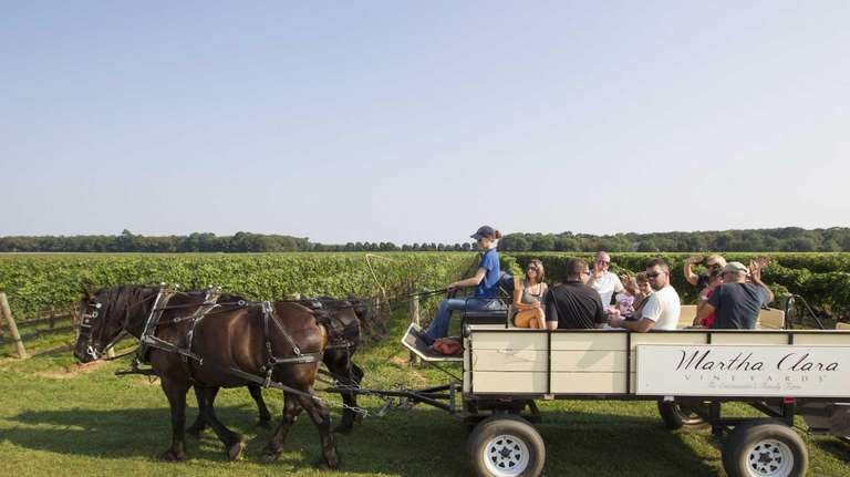 Spencer and Tracey, Percheron horses lead the tour