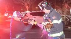 The West Babylon Fire Department rescued a dog