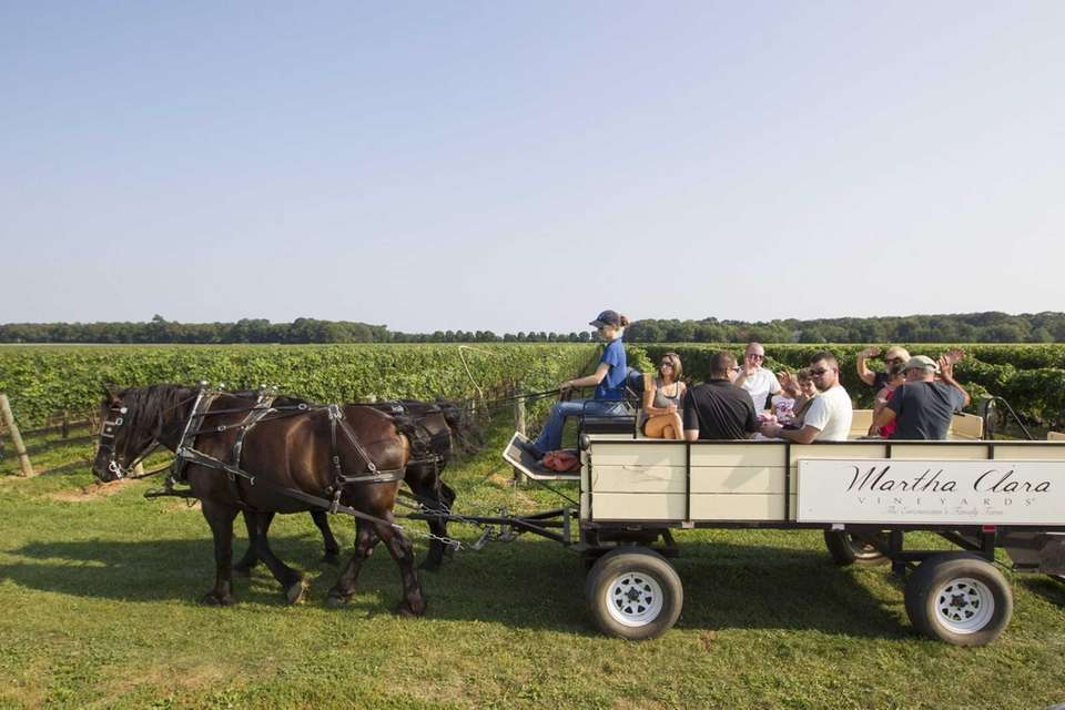 The 20-minute tour rides offered at Martha Clara