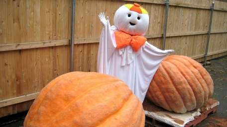 Otto the ghost at Hick's Nursery in Hicksville,
