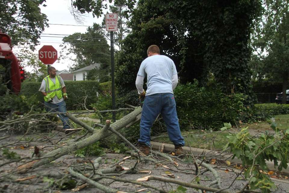 Freeport Highway crews cut up and remove tree