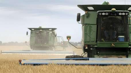 In this file photo, combines harvest rice in