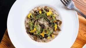 Black truffl'd risotto, with mushrooms, black-truffle jus and