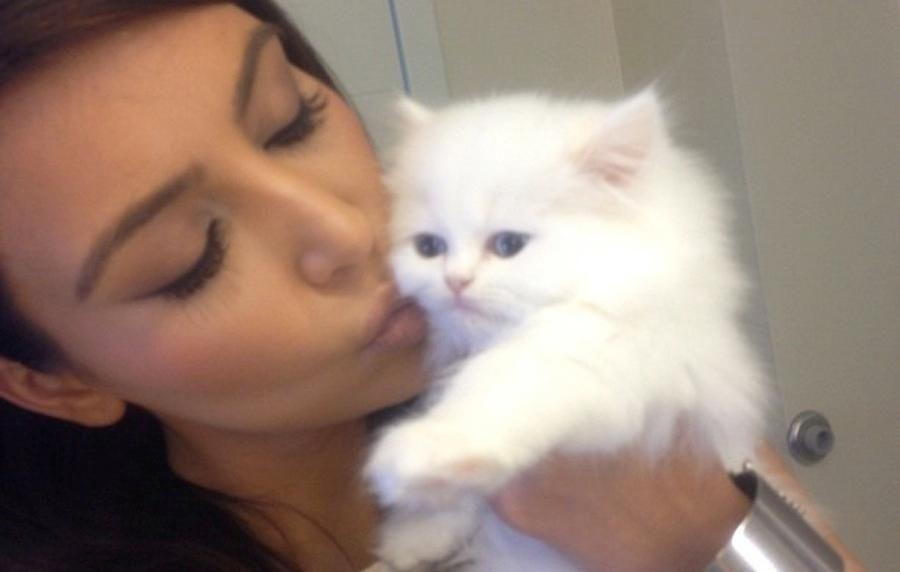 Kim Kardashian posted this photo to Twitter of