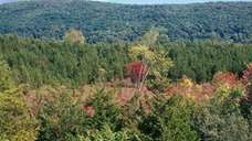 Roger Perry Preserve in Dover Plains (Michael King/The
