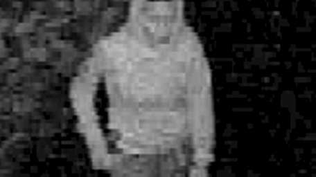 Suffolk County police have released video images of