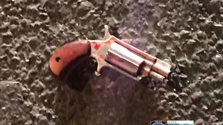 One of two .22-caliber handguns police say was