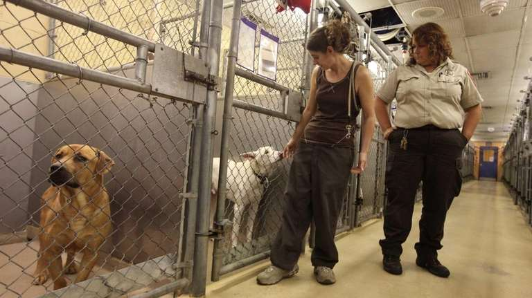 Kennel Attendant Andrea DaSilva, left, and Animal Control