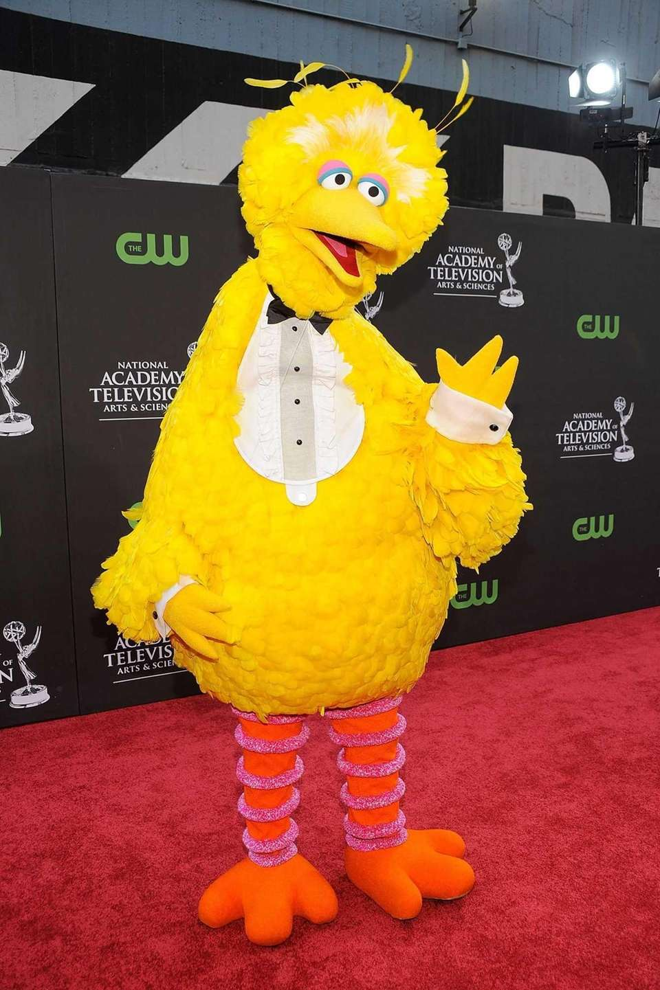 Big Bird arrives at the 36th Annual Daytime