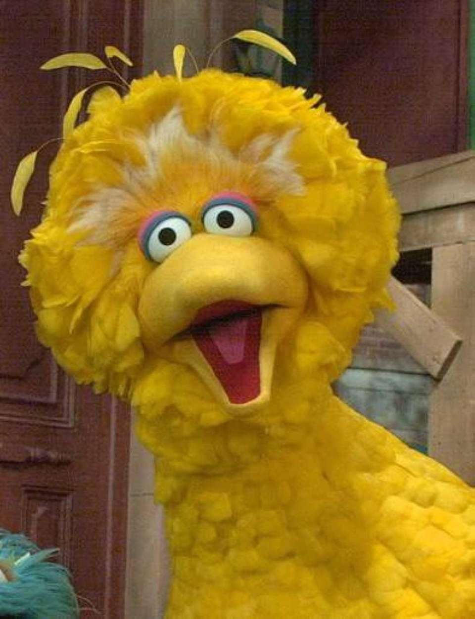 "Big Bird in Manhattan at the ""Sesame Street"""