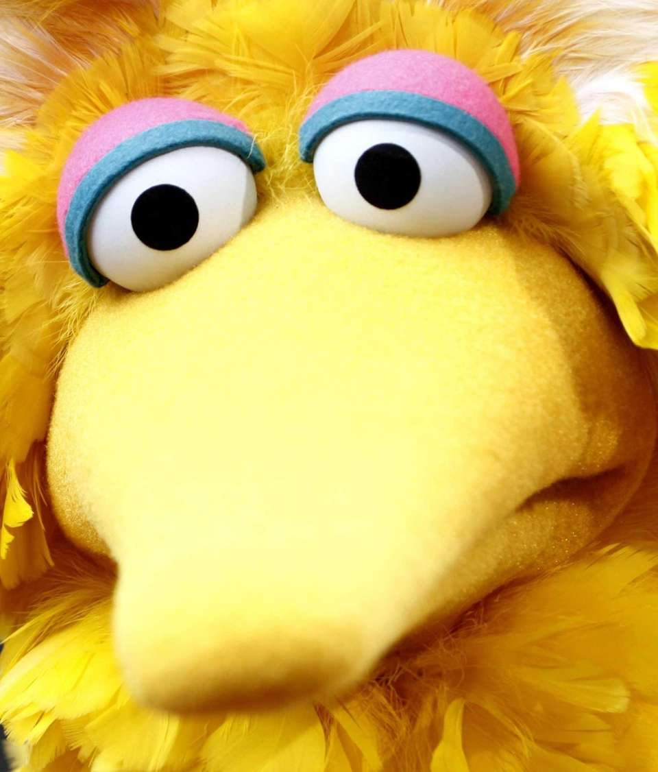 "Big Bird, of the children's television show ""Sesame"