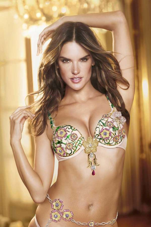 Victoria's Secret's 2012 fantasy bra was worth $2.5