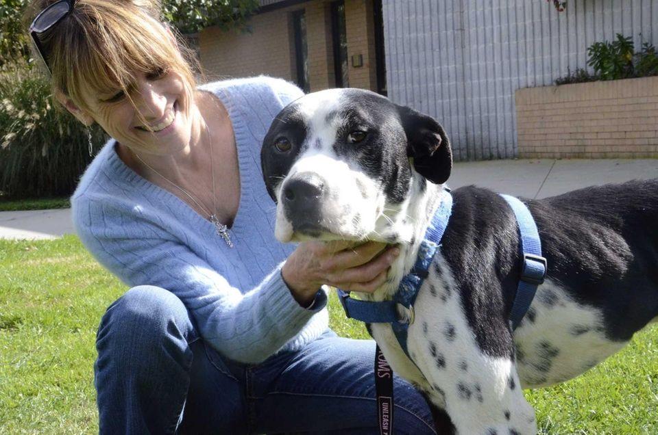 Dori Scofield, director of the Brookhaven Animal Shelter,