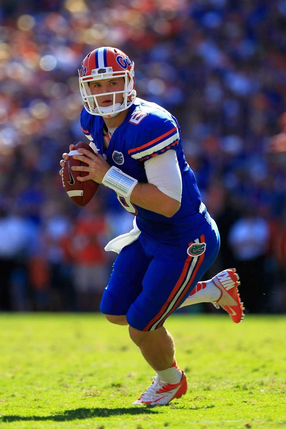 Florida quarterback Jeff Driskel looks to throw the