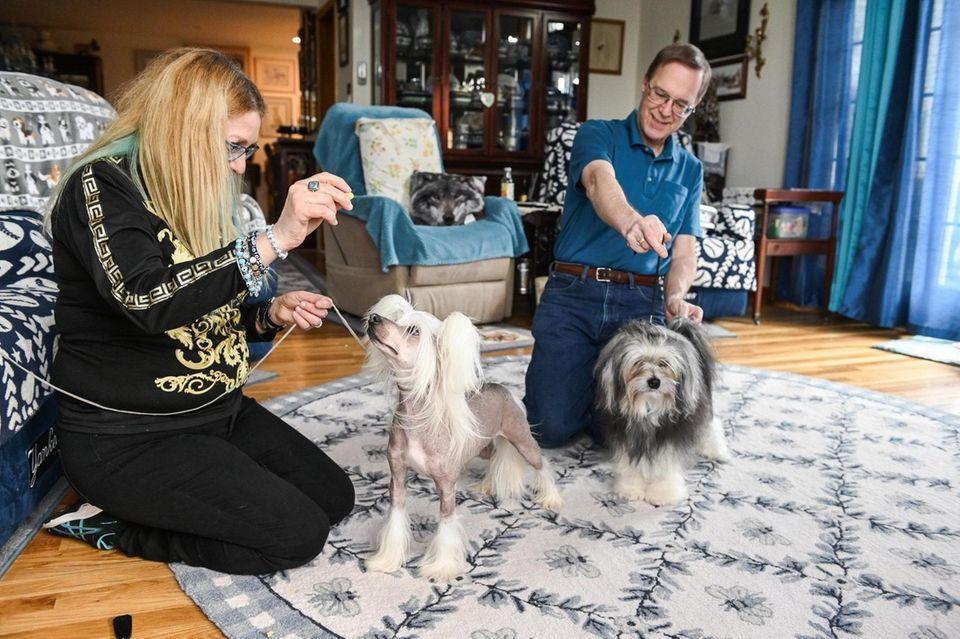 Dog owners/handlers Victor Helu, 60, of Bohemia, right,