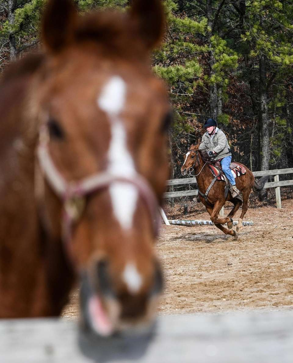 Lance Malone, of Medford, rides his off-track thoroughbred