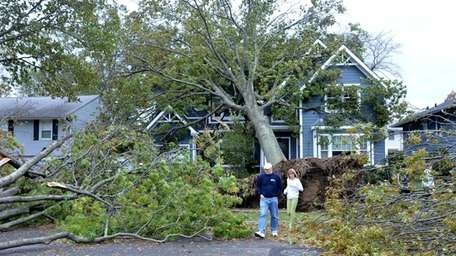 Walkers pick their way Tuesday through downed trees