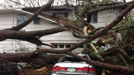 This tree came down on a house and