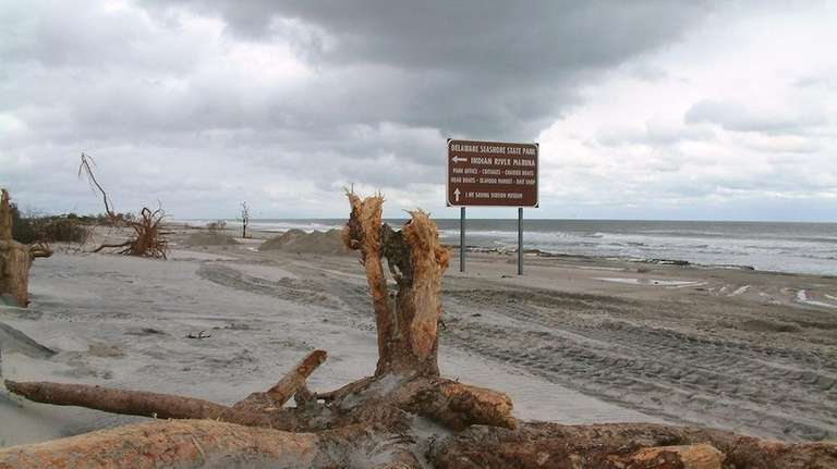 Debris litters the beach north of Indian River