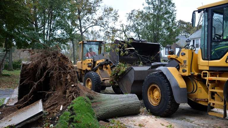 Crews clean up trees felled by Sandy along