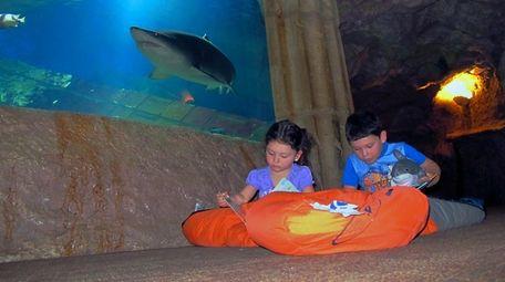 Julianna, 3, and brother Joseph Carasiti, 5, join