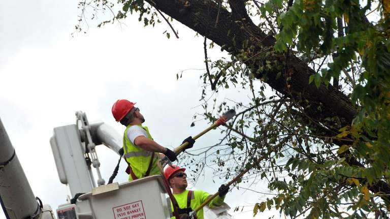 Contracted workers working for National Grid trim trees