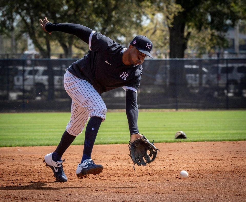 New York Yankees' INF/OF Rosella's Herrera fielding balls
