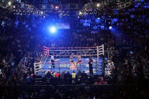 Miguel Cotto and Antonio Margarito fight during the