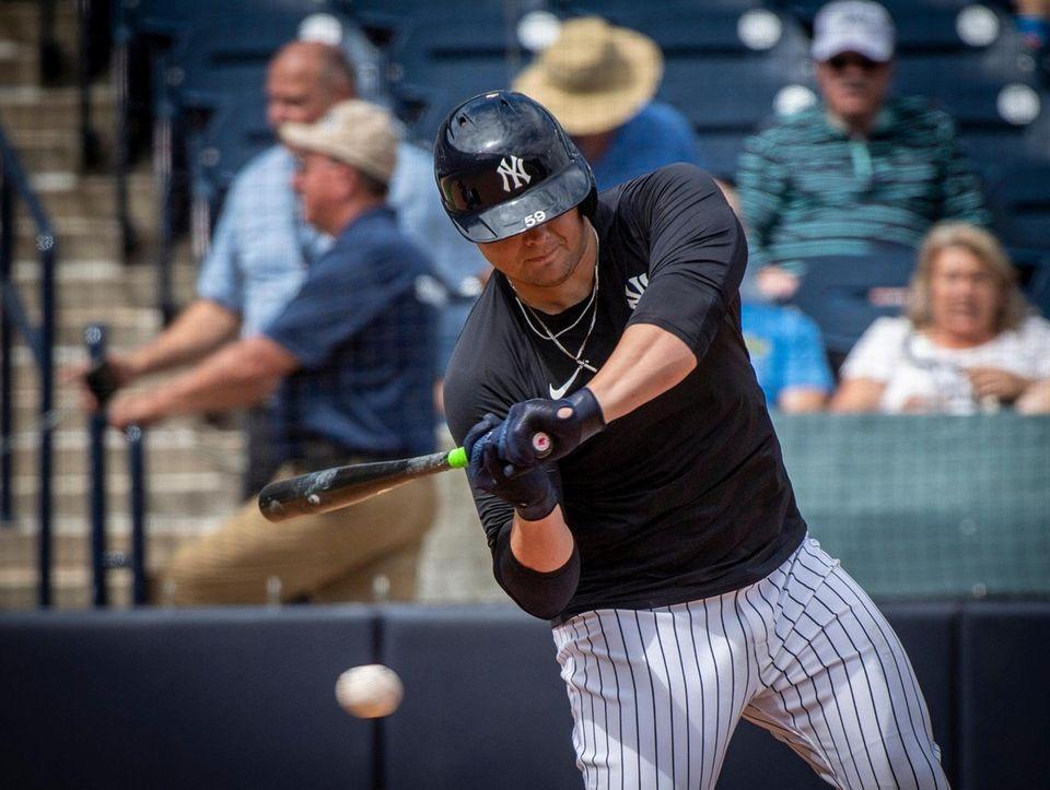 New York Yankees' Luke Voit hitting during live