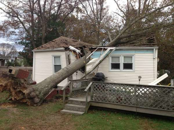 A tree fell onto a house in Ronkonkoma,