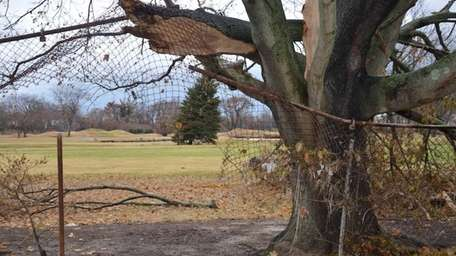 Superstorm Sandy damaged not only on the golf