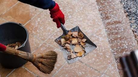 Homeowners can help by clearing up leaves piled