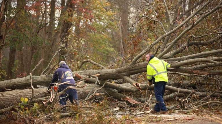 Workers from the Smithtown Highway Department remove trees