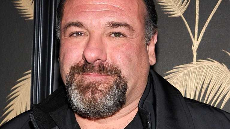James Gandolfini attends the after party for a