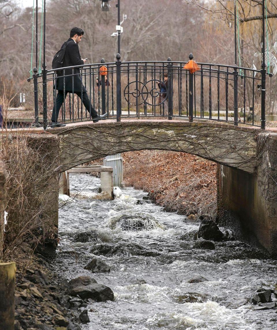 As he strolls through Milton L. Burns Park