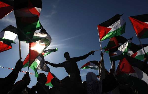 Palestinians wave flags as they celebrate their successful