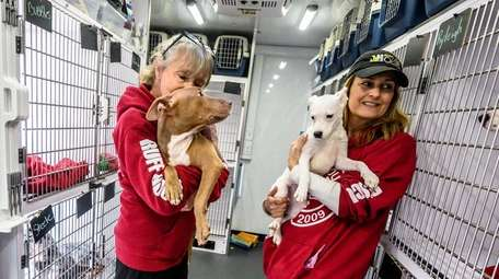 Ruff House Rescue is among the shelters looking