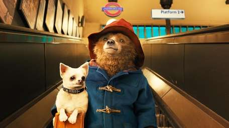 Paddington Bear (Voiced by Ben Whishaw) in The