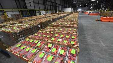 Strawberries in stock at a Stop & Shop