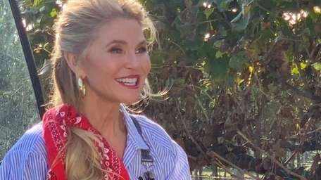 Christie Brinkley is helping to raise funds to