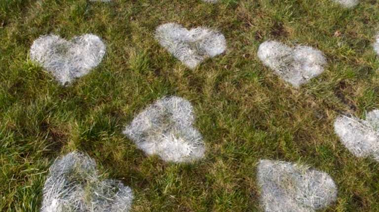 Surprise your Valentine with a lawn heart attack: