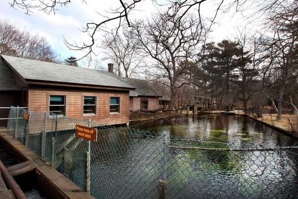 The Friends of Connetquot is going to restore