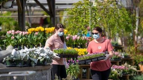 Shoppers plan their gardens at Main Street Nursery