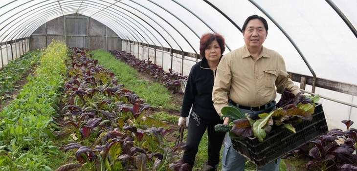 Julie and Davie Yen began their Yaphank farm