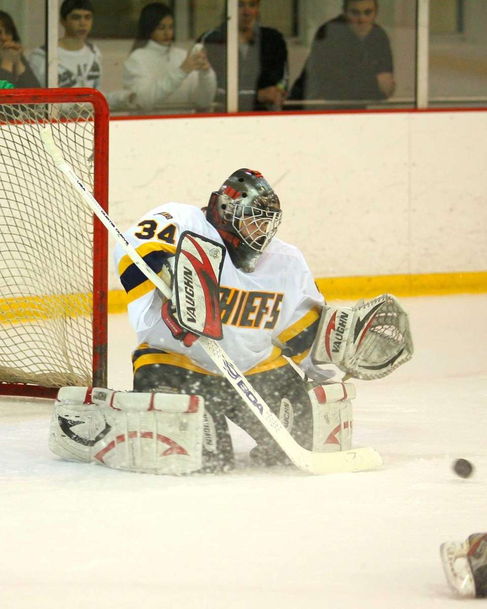 Massapequa's Dana DeMartino makes a save. (Jan. 16,