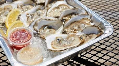Blue point oysters on the half shell served